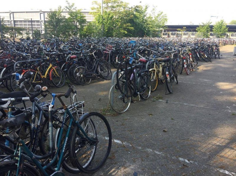 Where bicycles come to die.
