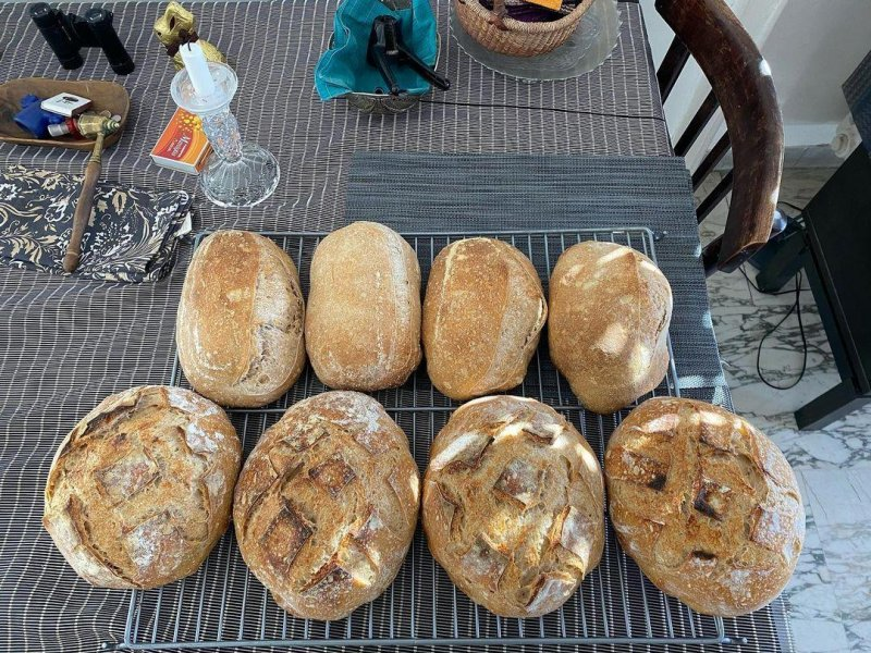 Today's big bake, 70% Manitoba with 10% each of einkorn, spelt and rye (wholemeal)