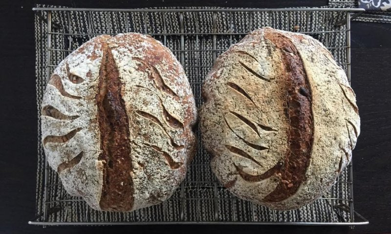 The infallible standby; multigrain seedy wholewheat.#sourdough #naturalleaven