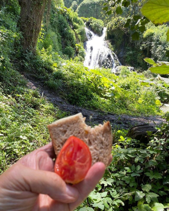 Home grown tomato, home made bread, man made waterfall
