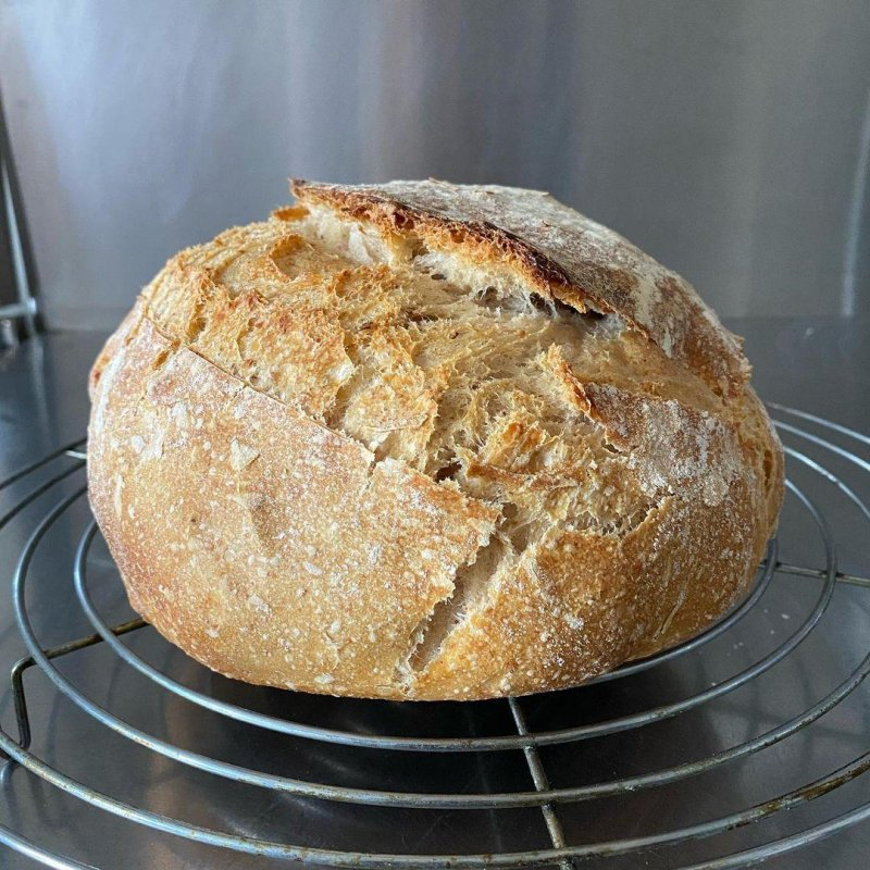 Second order of business: revive the starter and bake good bread.