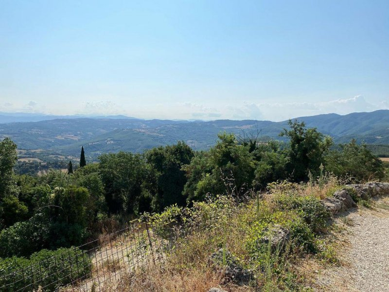 Looking across the Tiber valley from Titignano to our temporary home.